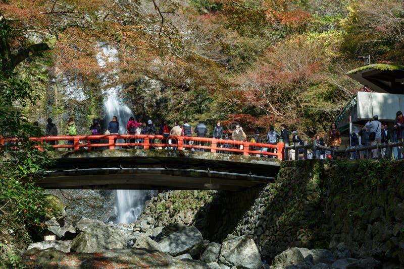 Cachoeira no outono, Osaka de Minoh, Kansai, Japão imagem de stock