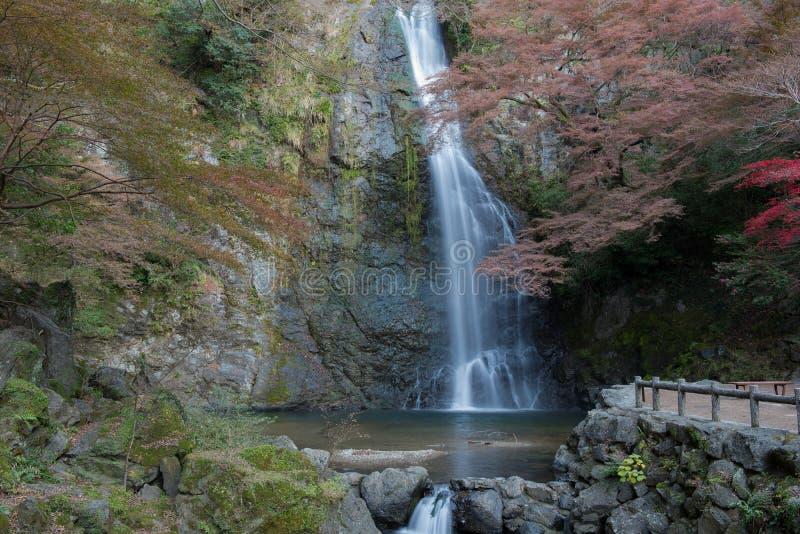 Cachoeira no outono, Osaka de Minoo, Japão fotografia de stock royalty free