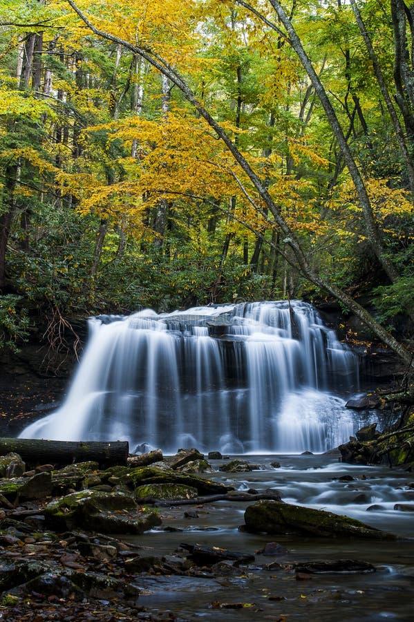 Cachoeira no outono - quedas superiores da angra da corrida da queda, Holly River State Park, West Virginia fotografia de stock royalty free