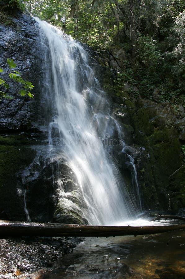 Cachoeira no parque nacional de sequóia imagens de stock royalty free
