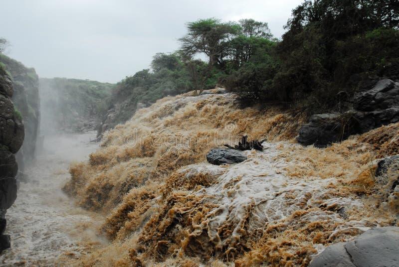 Cachoeira no parque nacional inundado, Etiópia imagens de stock