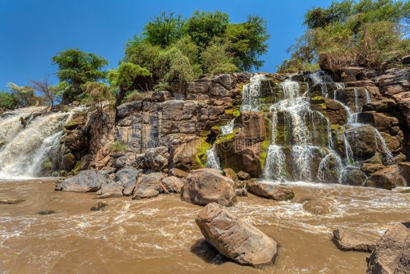 Cachoeira no parque nacional inundado fotos de stock royalty free