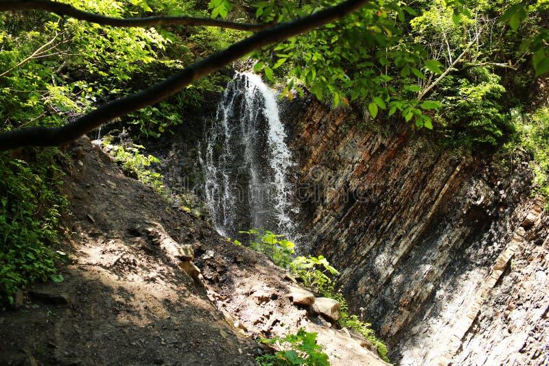 Cachoeira no parque nacional Na floresta profunda na montanha Cachoeira da montanha fotos de stock