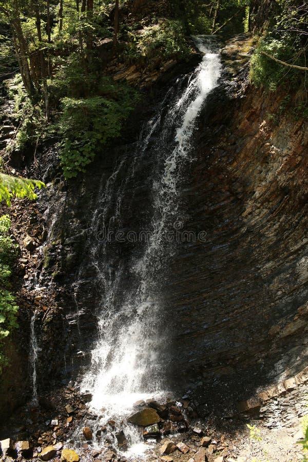 Cachoeira no parque nacional Na floresta profunda na montanha Cachoeira da montanha foto de stock