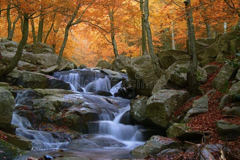 Cachoeira no parque natural de Montseny (Barcelona-Espanha) fotografia de stock royalty free