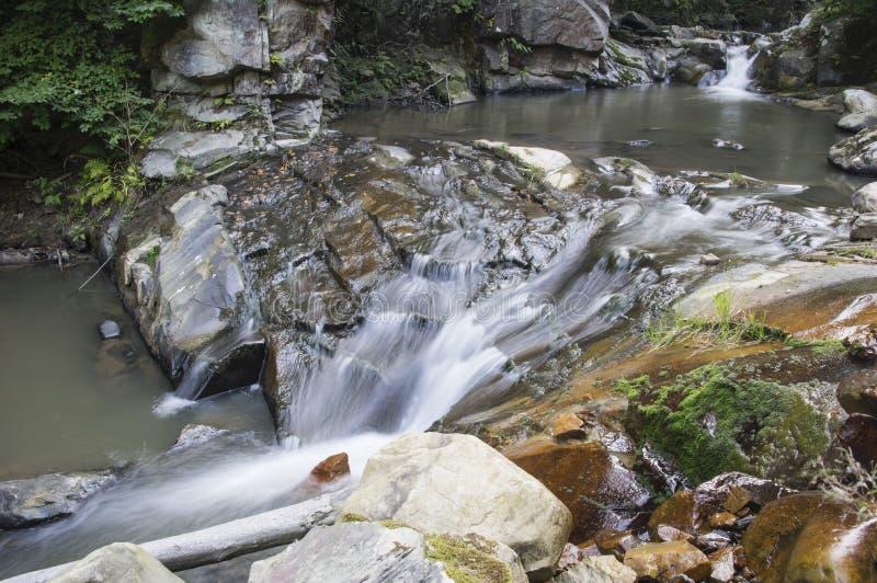 Cachoeira no ribeiro imagens de stock royalty free