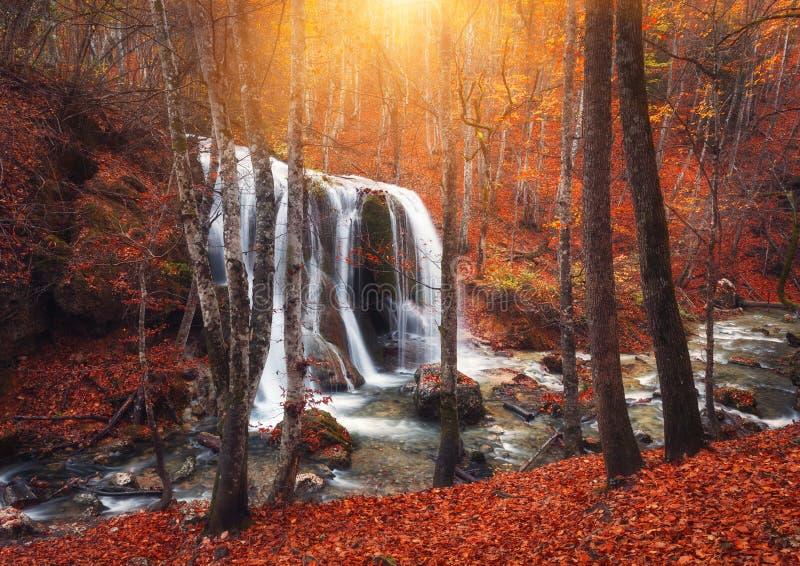 Cachoeira no rio da montanha na floresta do outono no por do sol imagens de stock royalty free