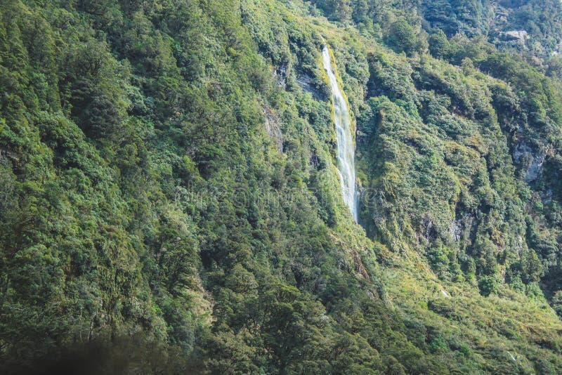 Cachoeira no som duvidoso - passando o cenário bonito no parque nacional de Fiordland, ilha sul, Nova Zelândia imagem de stock