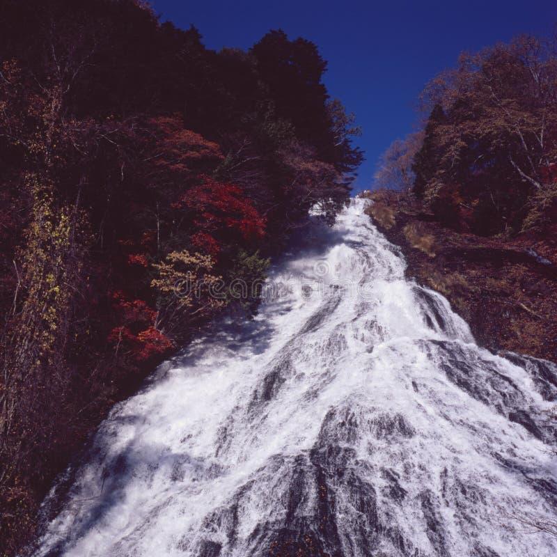 Cachoeira outonal fotografia de stock royalty free