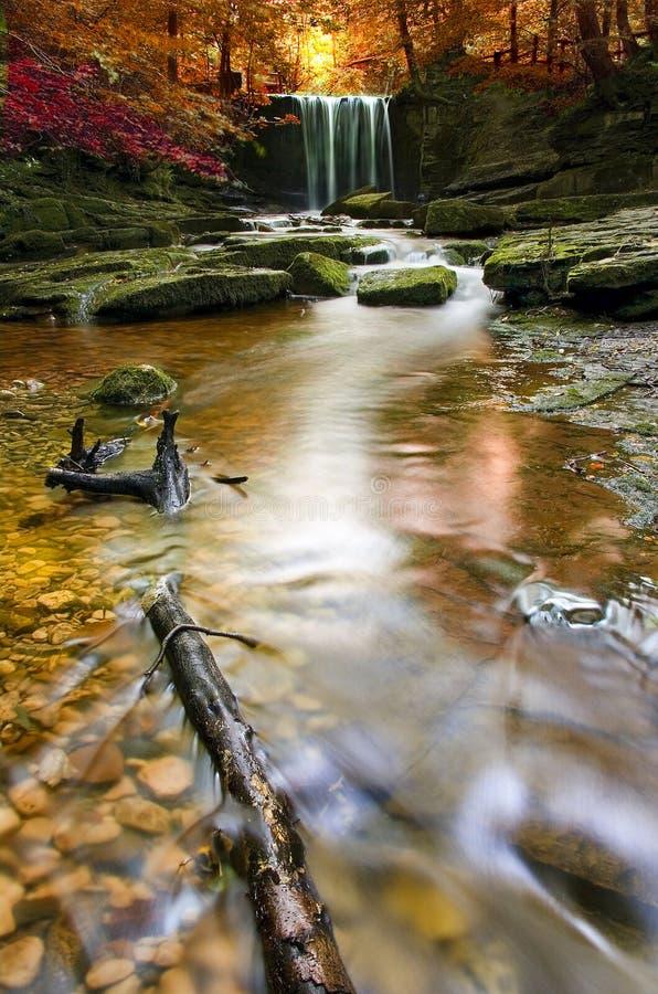 Cachoeira outonal em wales imagens de stock royalty free
