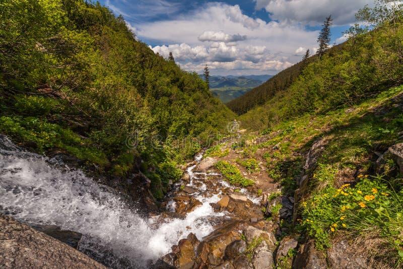 Cachoeira pequena bonita nas montanhas, Ucrânia imagens de stock royalty free