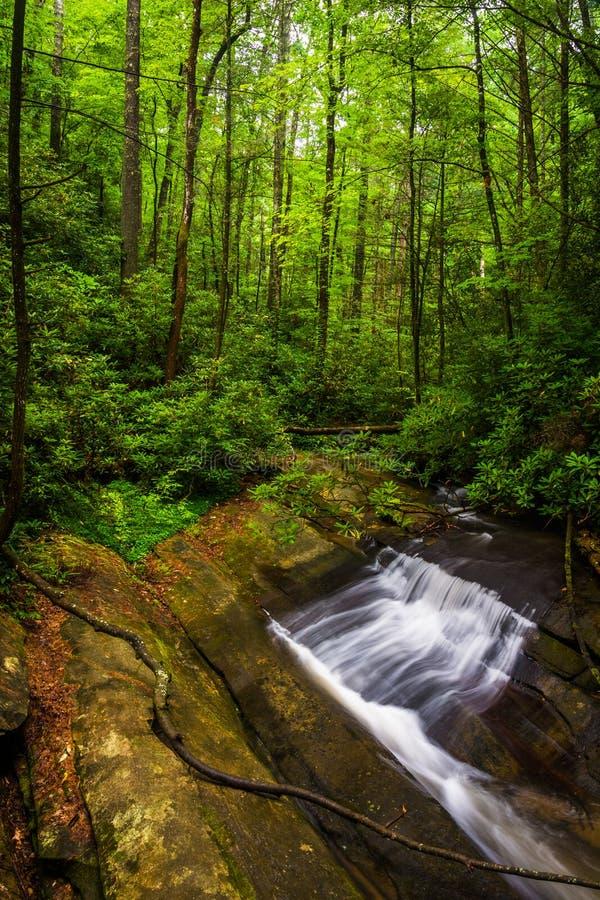 Cachoeira pequena em Carrick Creek, no parque estadual da rocha da tabela, Sout imagem de stock