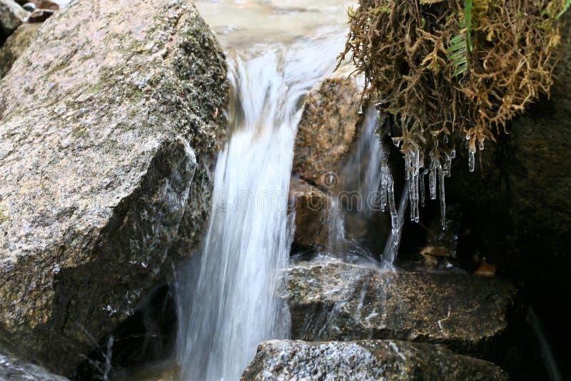 Cachoeira pequena em mais baixo Reid Falls em Skagway, Alaska fotos de stock