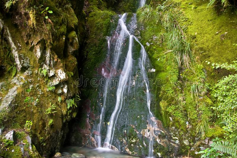 Cachoeira pequena Mossy 2
