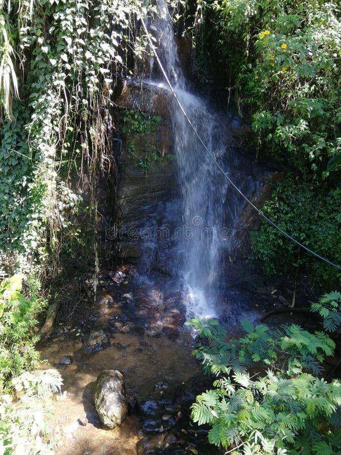 Cachoeira pequena na natureza fotos de stock royalty free
