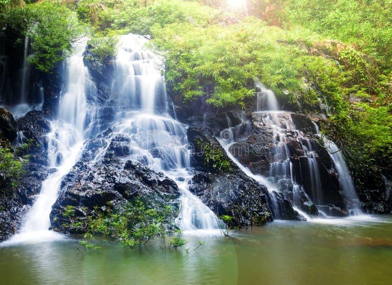 A cachoeira pequena na selva fotos de stock royalty free