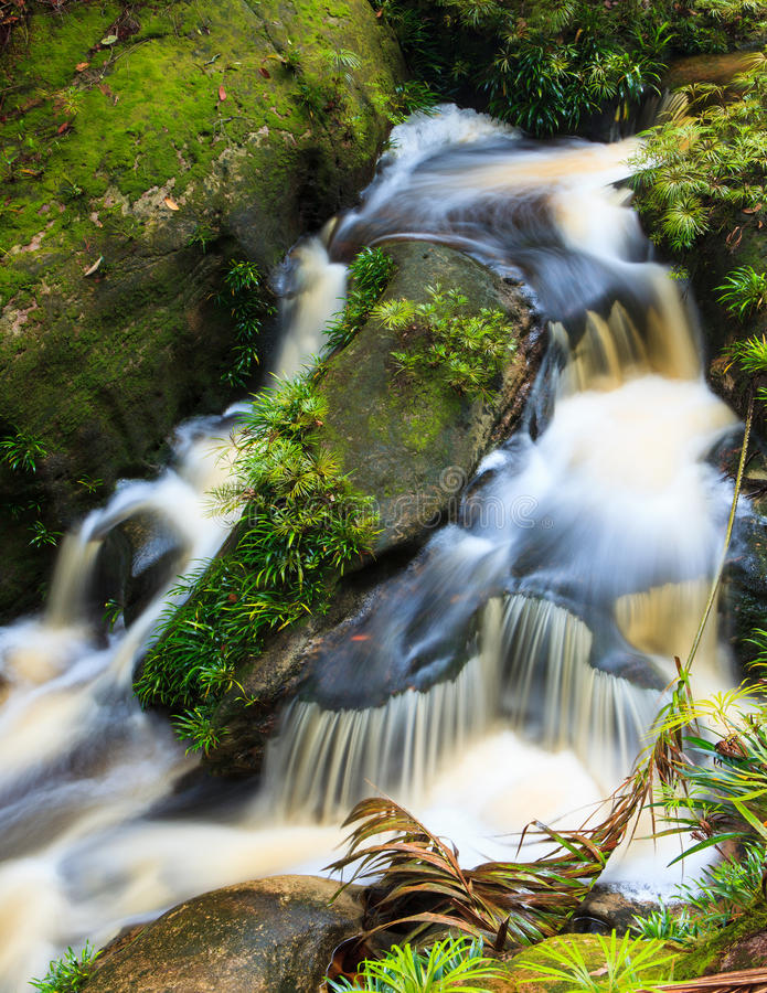 Cachoeira pequena na selva fotografia de stock royalty free