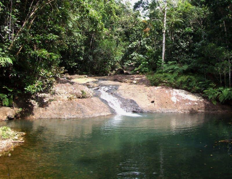 Cachoeira pequena na selva do Fijian fotografia de stock