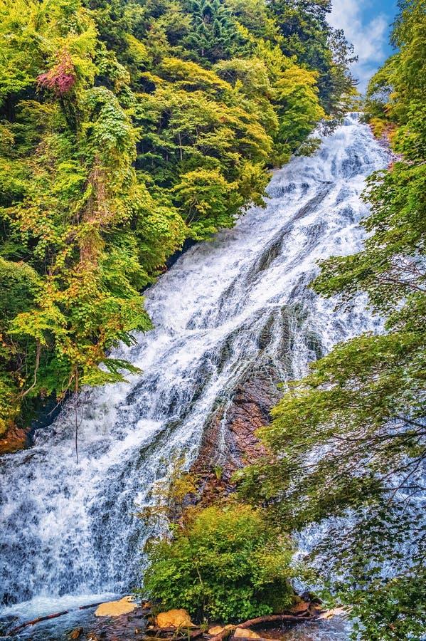 Cachoeira perto de Nikko, Japão imagem de stock royalty free