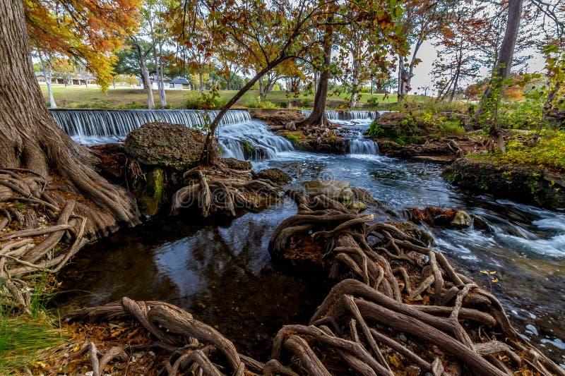 Cachoeira pitoresca com raizes da árvore de Chipre. imagem de stock
