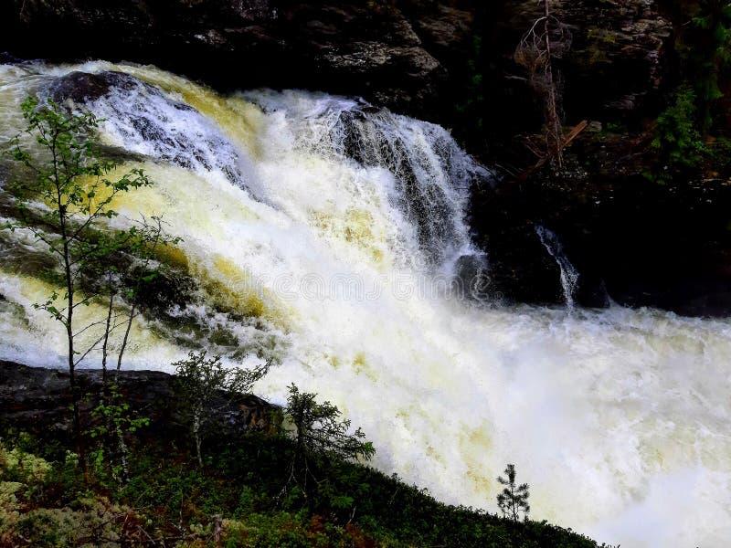 A cachoeira poderosa faz a água branca imagem de stock royalty free
