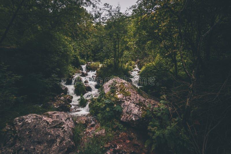 Cachoeira profunda bonita da floresta nas Astúrias imagem de stock royalty free