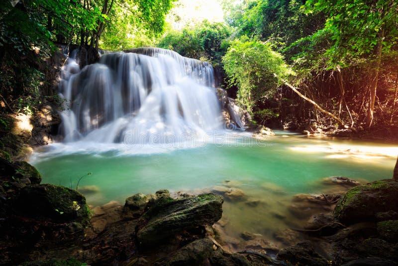 Cachoeira profunda da floresta imagem de stock