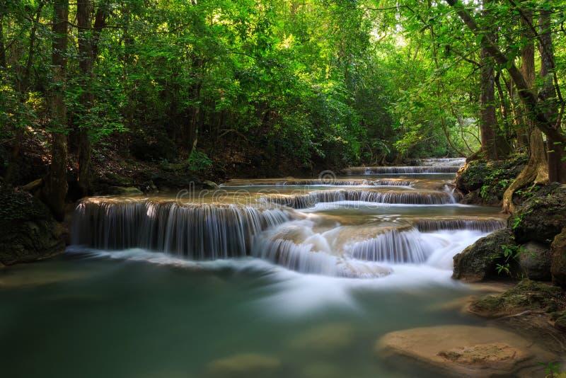 Cachoeira profunda da floresta fotografia de stock royalty free