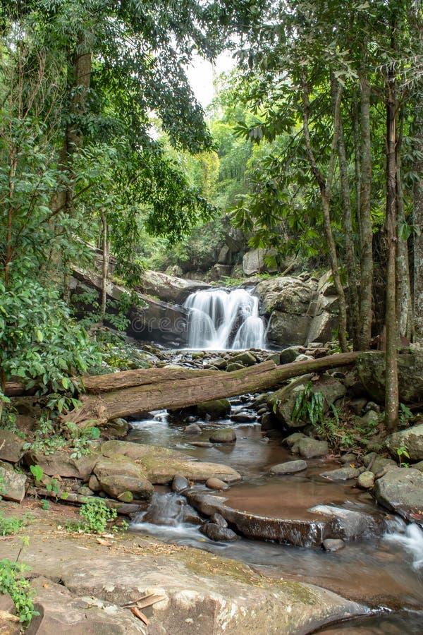 Cachoeira que flui das montanhas na cachoeira de Phu SOI DAO foto de stock