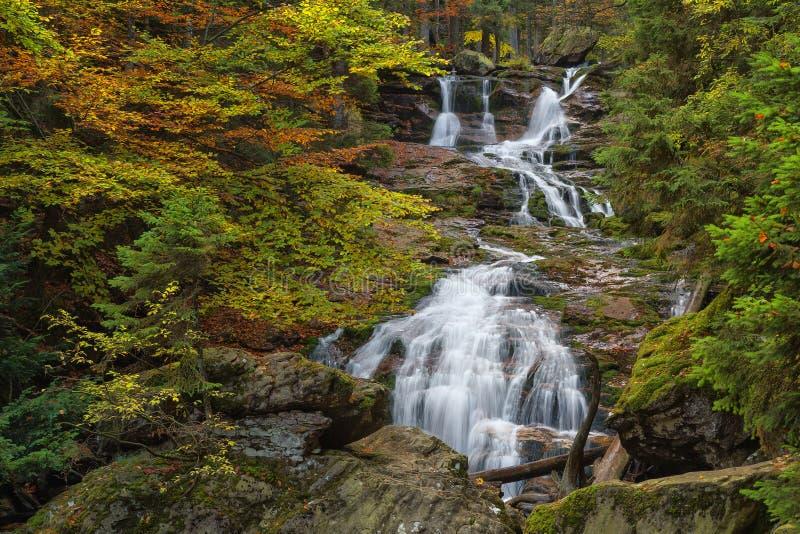 Cachoeira Riesloch, maciço arborizado da rocha, Bodenmais, floresta bávara do parque nacional imagem de stock royalty free