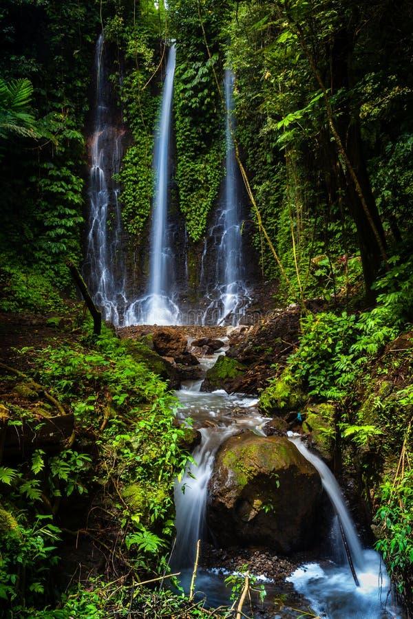 Cachoeira secreta Pucak Manik da selva, escondido na selva foto de stock royalty free
