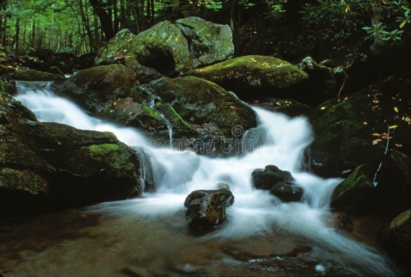Cachoeira sonhadora imagens de stock royalty free
