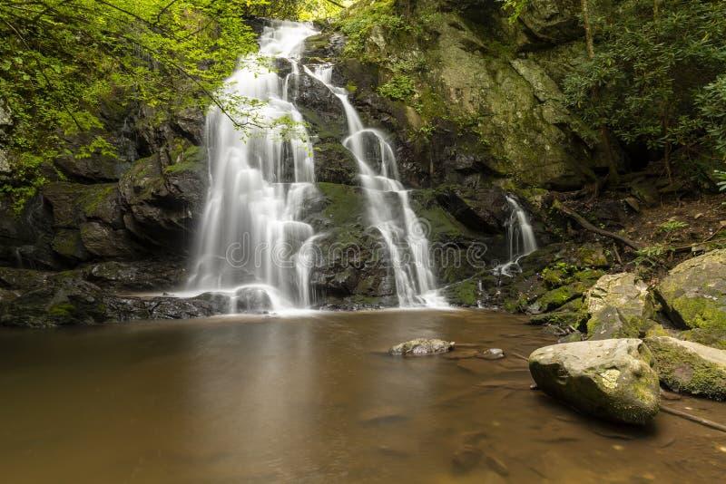 Cachoeira Spruce das quedas dos planos imagens de stock royalty free