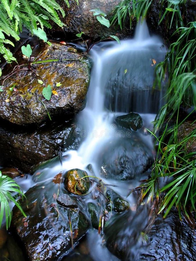 Cachoeira sul do banco fotografia de stock royalty free