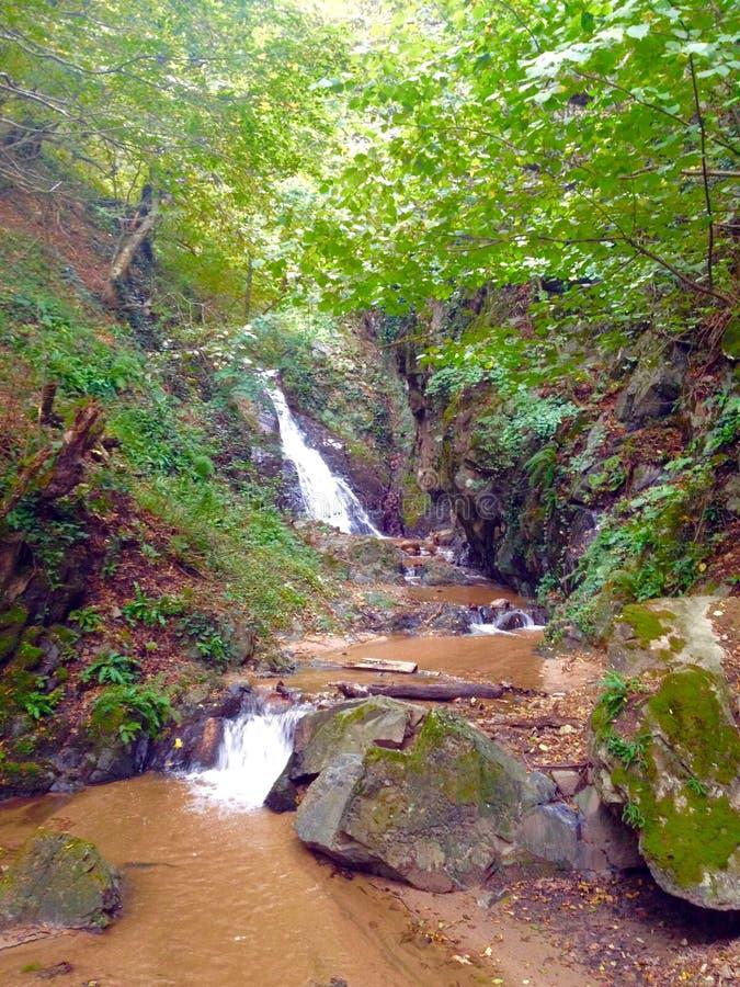 Cachoeira Sunlit imagem de stock