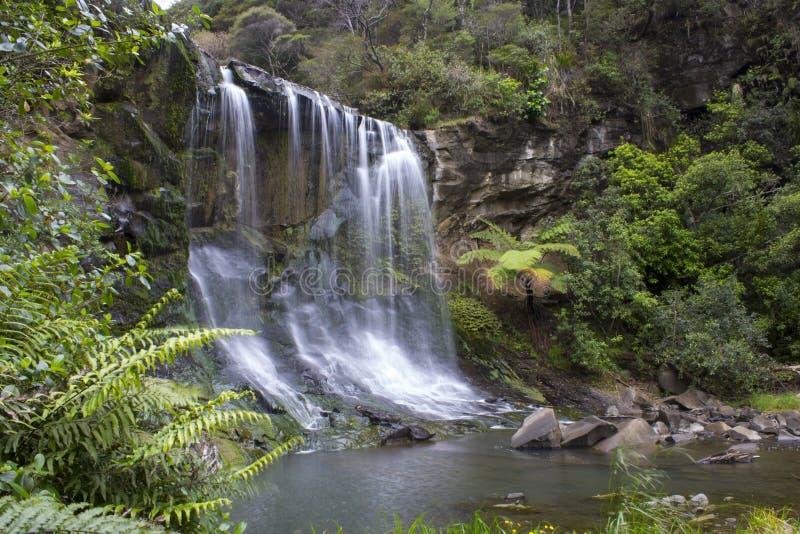 Cachoeiras Auckland Nova Zelândia de Mokoroa imagens de stock