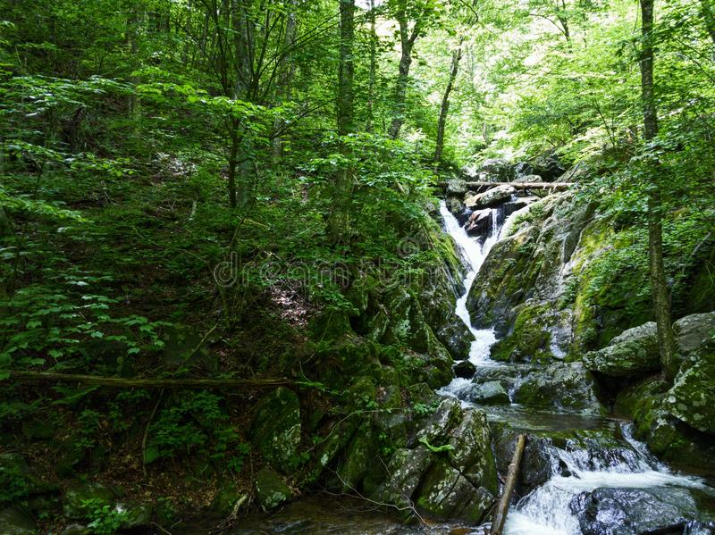 Cachoeiras bonitas do parque nacional de Shenandoah fotos de stock