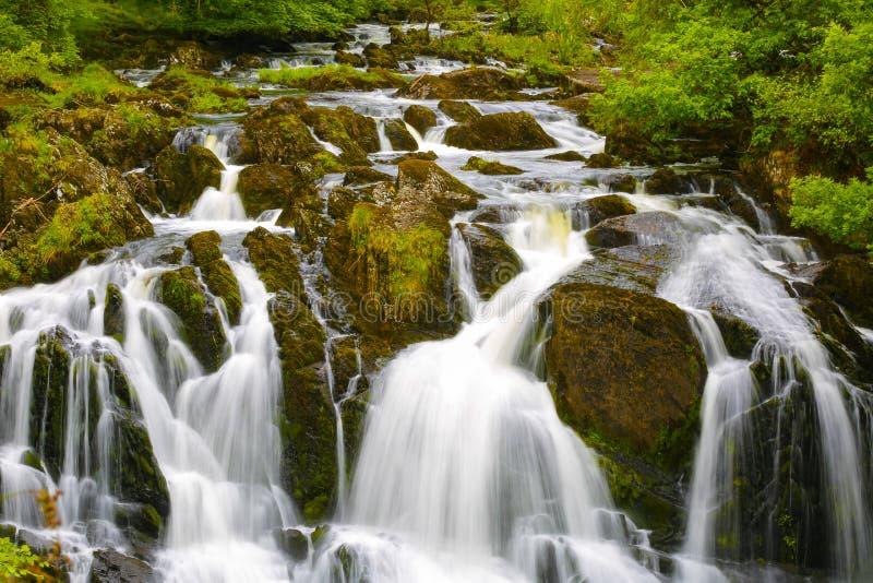Cachoeiras BRITÂNICAS da andorinha de Gales imagens de stock royalty free