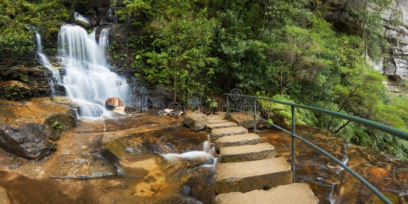 Cachoeiras da floresta úmida, montanhas azuis, Austrália imagens de stock