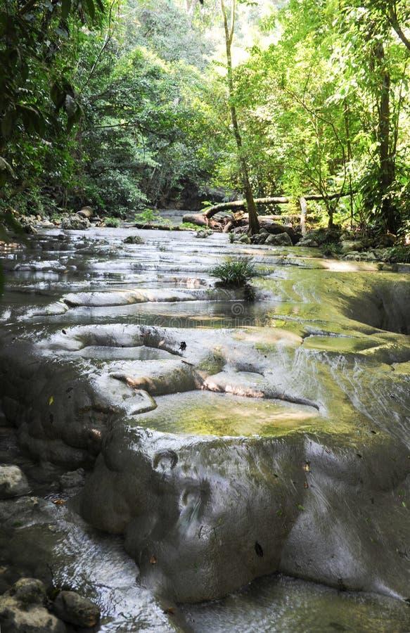 Cachoeiras de altares do siete na floresta em Livingston foto de stock