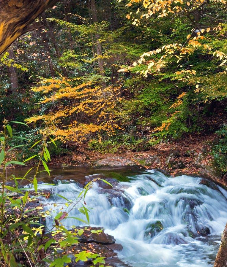 Cachoeiras de conexão em cascata imagens de stock