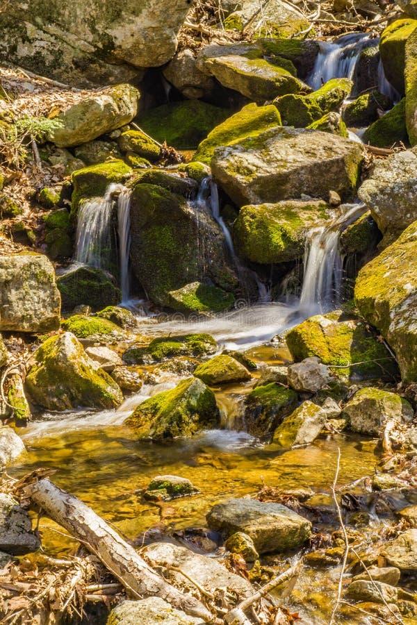 Cachoeiras de conexão em cascata da mola imagem de stock