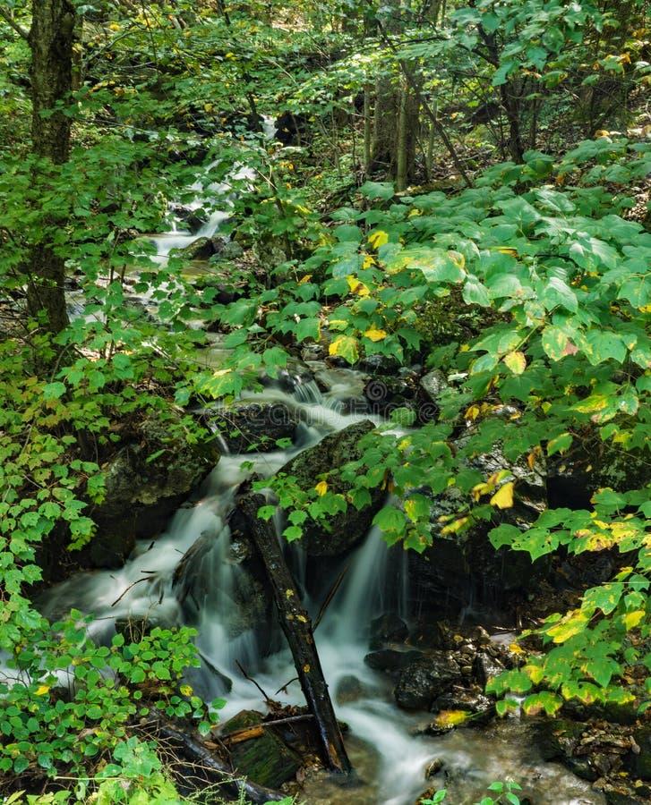 Cachoeiras de conexão em cascata escondidas em Ridge Mountains azul fotografia de stock