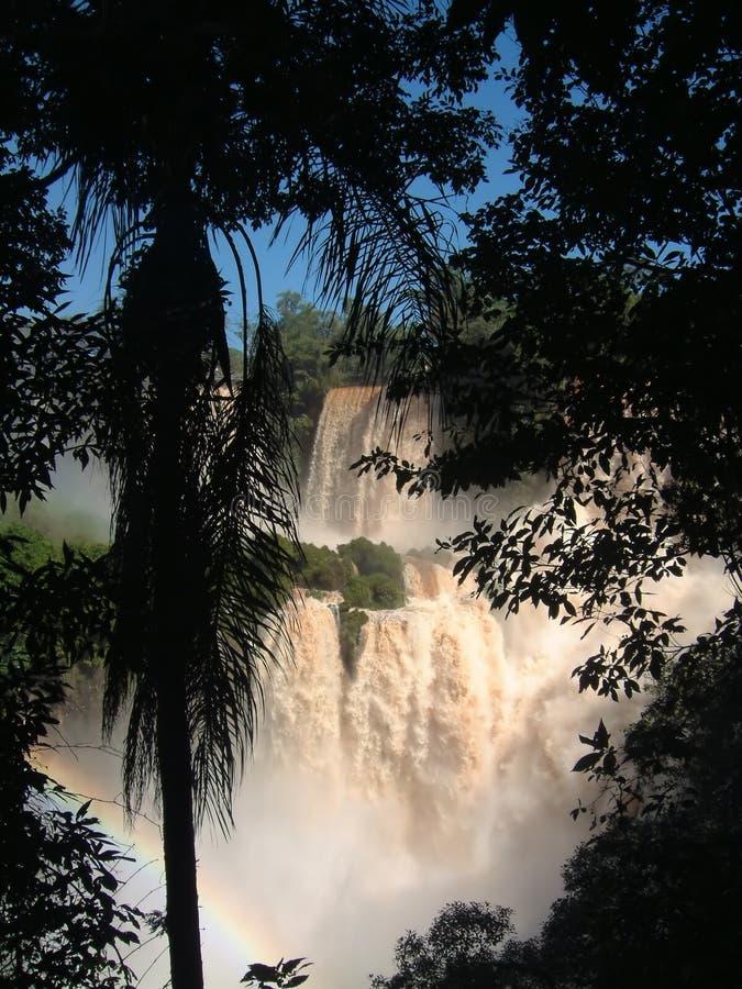 Cachoeiras de Iguazu imagem de stock royalty free