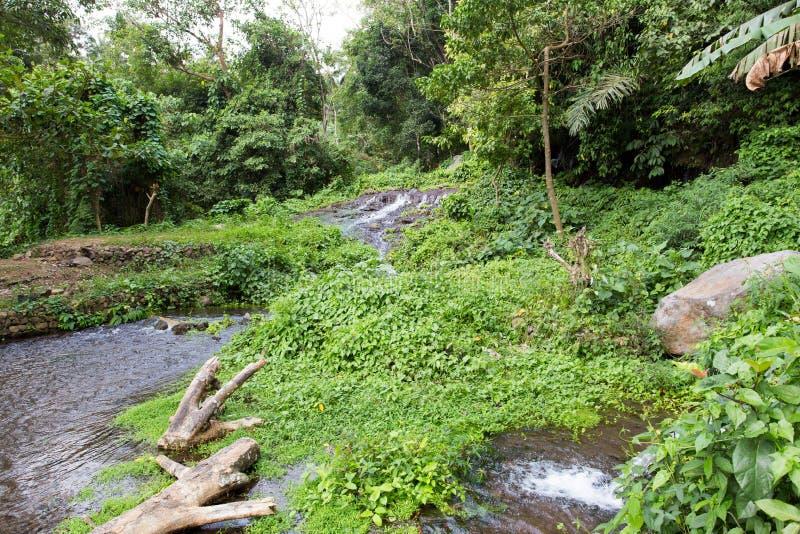 Cachoeiras de Sekumpul em Bali imagem de stock