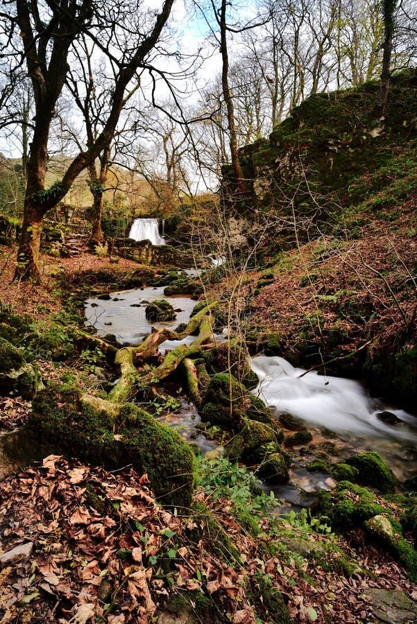 Cachoeiras do ` s Foss de Janet foto de stock
