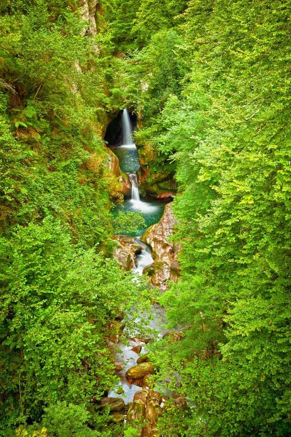 Cachoeiras em uma floresta profunda da vontade fotografia de stock royalty free