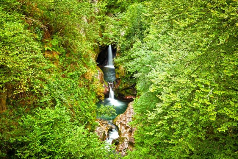 Cachoeiras em uma floresta profunda da vontade foto de stock royalty free