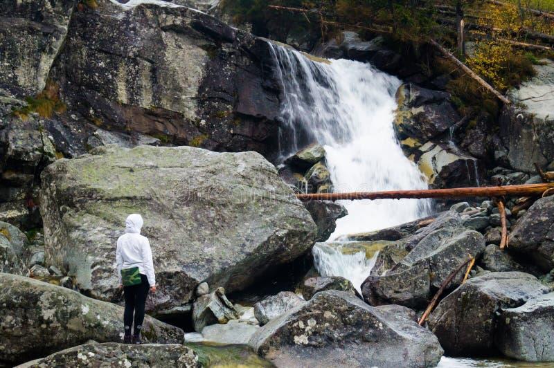 Cachoeiras frias da angra Parque narodny de Tatransky Vysoke tatry slovakia fotografia de stock