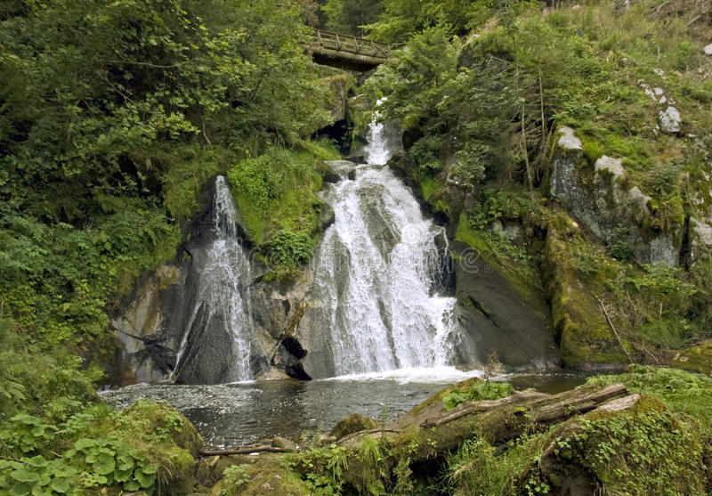 Cachoeiras idílico de Triberg foto de stock royalty free